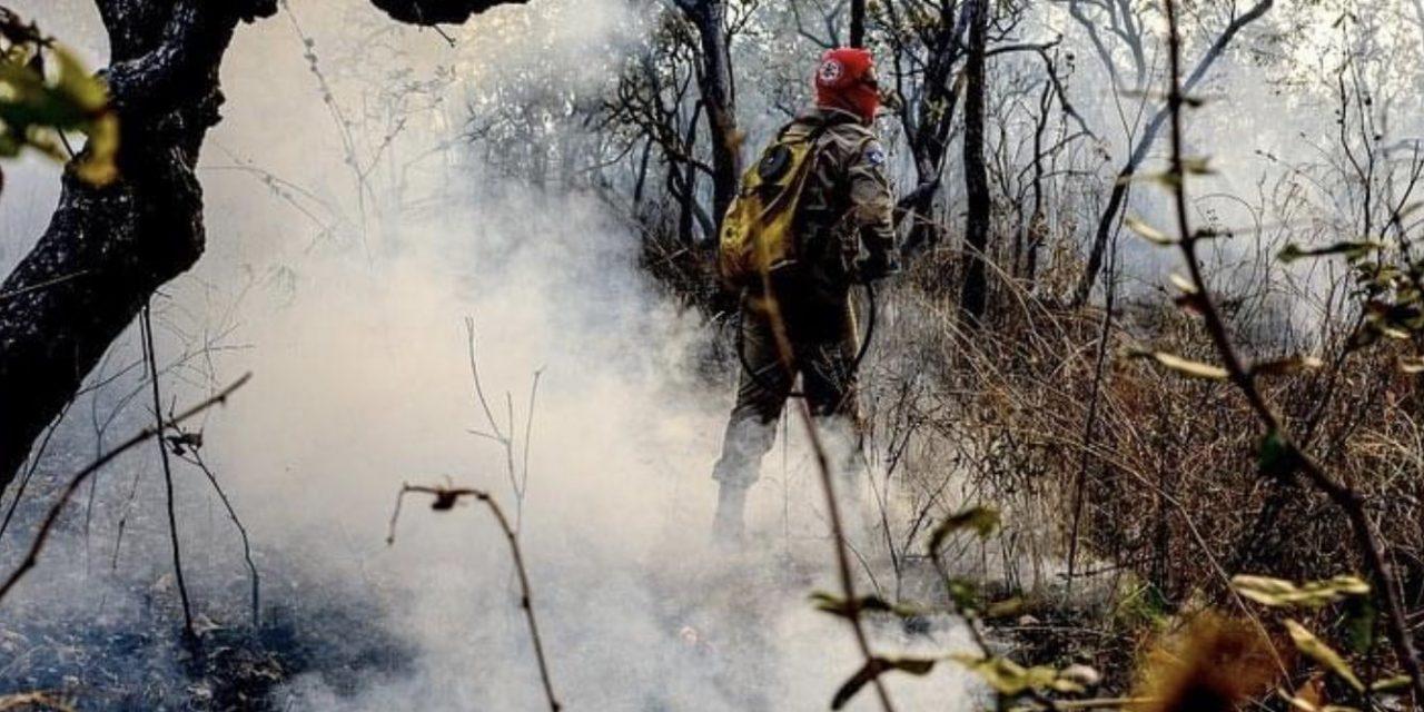 Pantanal sob chamas pode ter chuva nos próximos dias