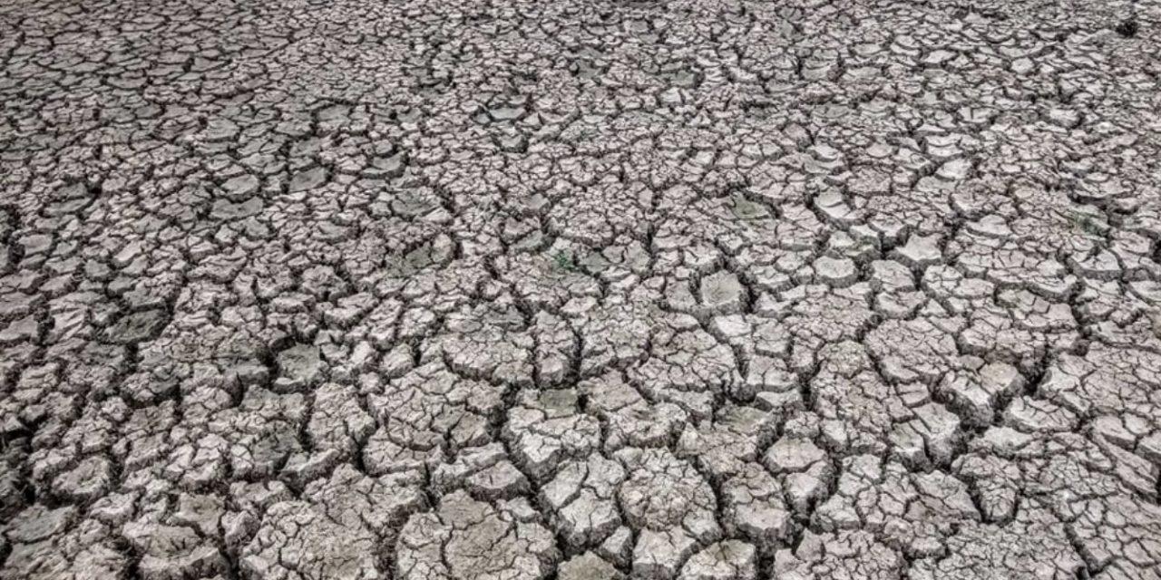 **ALERTA DE CLIMA** MAIS UMA SAFRA COM ESTIAGEM – VEJA AS PROJEÇÕES