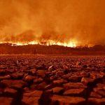 Calor é a tragédia dentro da tragédia no Pantanal