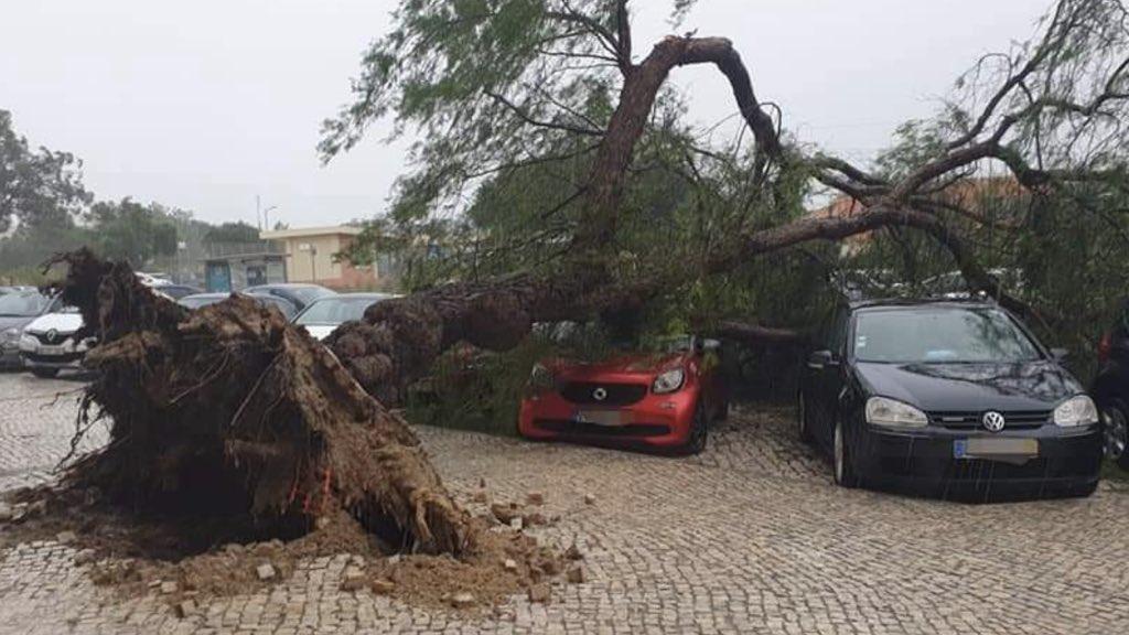 Portugal contabiliza estragos da tempestade Bárbara