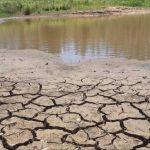 Plantio da safra tem maior atraso em uma década – O que esperar?