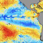 "<span class=""entry-title-primary""><span style='color:#ff0000;font-size:14px;'>PACÍFICO </span><br> La Niña volta a ganhar força</span> <span class=""entry-subtitle"">Fenômeno segue atuando na região do Pacífico Equatorial com reflexos no clima global </span>"