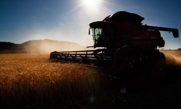 Tempo ajuda colheita em parte do Centro-Oeste do Brasil