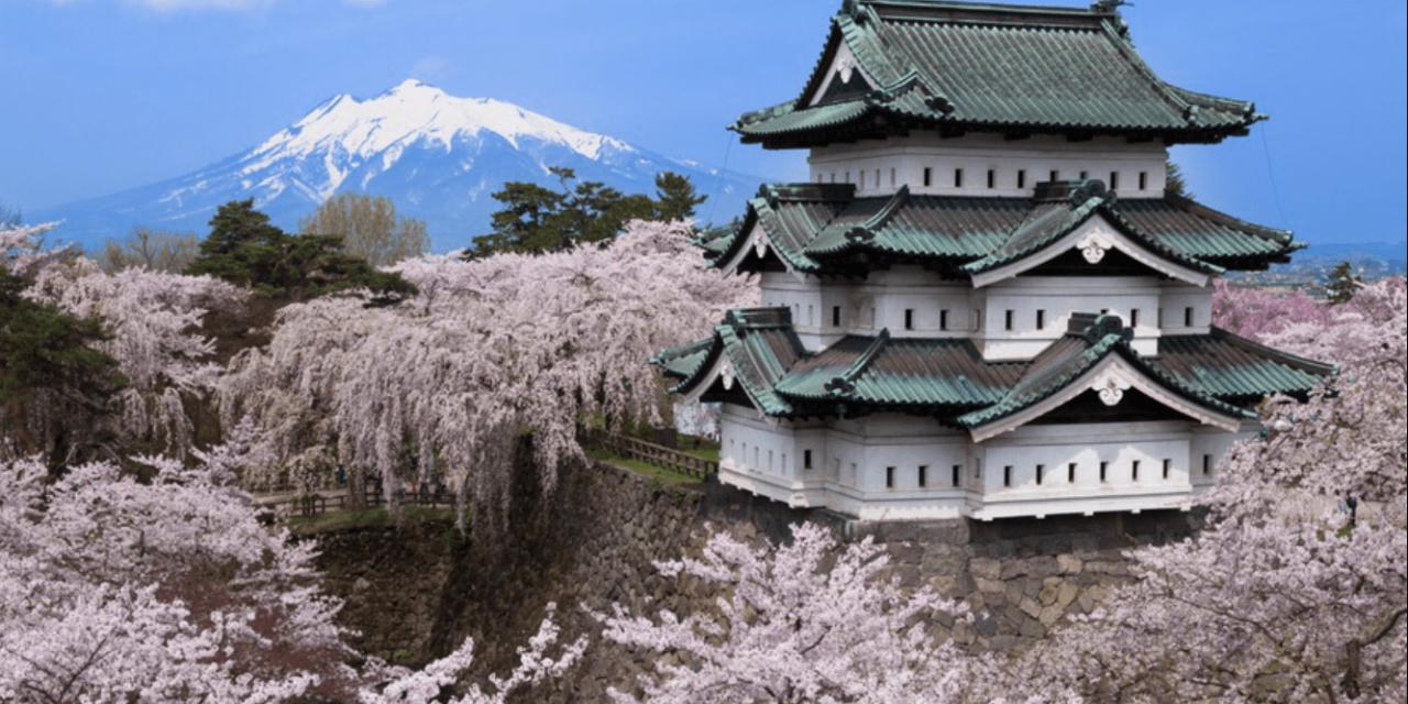 """<span class=""""entry-title-primary"""">O que as cerejeiras do Japão revelam sobre o aquecimento global</span> <h2 class=""""entry-subtitle"""">Floração das cerejeiras que é um festival de séculos no Japão ocorre cada vez mais cedo </h2>"""