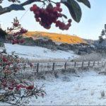 Inverno entrega cartão de visitas na primeira semana de frio do ano