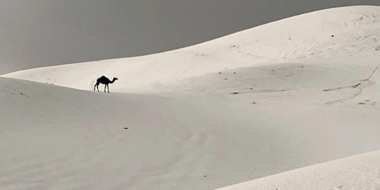"""<span class=""""entry-title-primary"""">Arábia Saudita tem imagens insólitas com tempestade de granizo</span> <span class=""""entry-subtitle"""">Tempestades de granizo no fim de semana deixaram brancas áreas do deserto saudita </span>"""