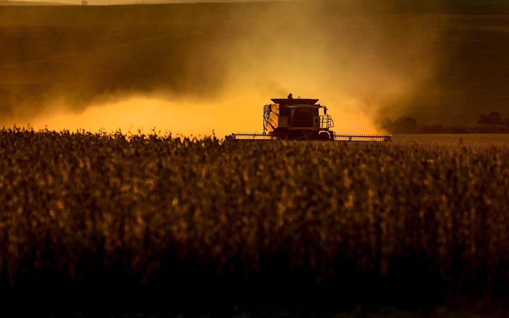 """<span class=""""entry-title-primary"""">Clima contribui para safra histórica de soja no Brasil</span> <span class=""""entry-subtitle"""">Chuva durante o ciclo vegetativo garante ampliação da produção e um ano excelente para os produtores </span>"""