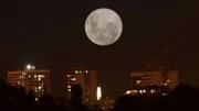 "<span class=""entry-title-primary"">Veja as imagens da primeira Superlua de 2021</span> <span class=""entry-subtitle"">Seguidores da MetSul nas redes sociais registram em fotos a primeira Superlua de 2021. Veja as belas imagens da Lua nesta segunda-feira. </span>"
