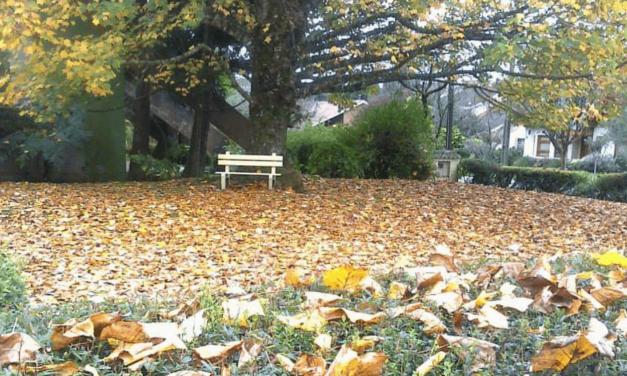 Clima de inverno se instala no Rio Grande do Sul