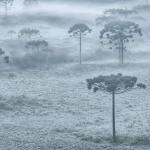 Dinâmica de inverno se instala com sucessivas massas de ar frio