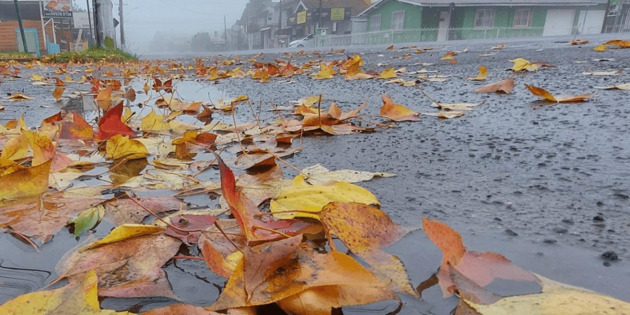 """<span class=""""entry-title-primary"""">Qual a chance de precipitação invernal nesta quinta-feira?</span> <h2 class=""""entry-subtitle"""">Instabilidade e muito frio em algumas regiões nesta quinta-feira no Sul do Brasil </h2>"""