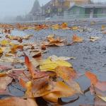 Qual a chance de precipitação invernal nesta quinta-feira?