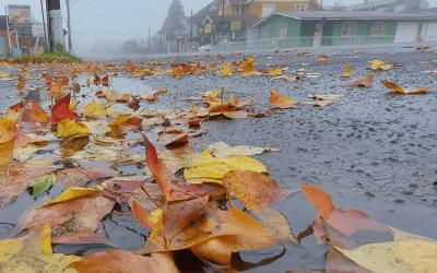 Qual a chance de precipitação invernal nesta quinta-feira? Instabilidade e muito frio em algumas regiões nesta quinta-feira no Sul do Brasil