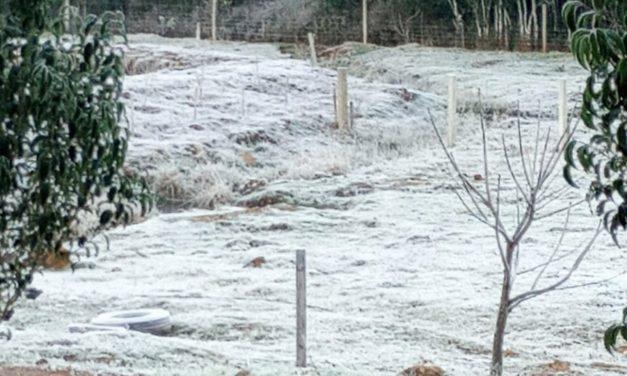 Frio congelante no Paraná