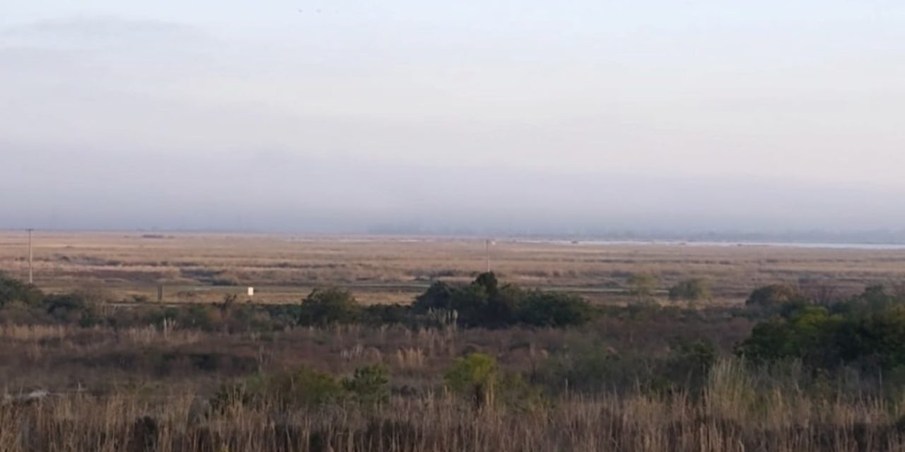 "<span class=""entry-title-primary"">Nevoeiro costeiro se amplia nesta sexta-feira</span> <span class=""entry-subtitle"">Entenda o fenômeno que se formou hoje no Litoral Sul do Rio Grande do Sul </span>"