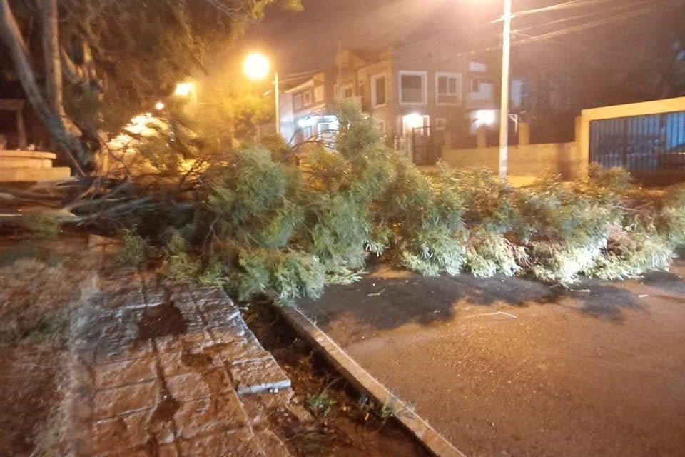 """<span class=""""entry-title-primary"""">Vento com força de furacão atinge o Sul da Argentina</span> <span class=""""entry-subtitle"""">Região patagônica foi atingida por um dos piores temporais de vento em uma década que deixou estragos e uma morte na cidade de Comodoro Rivadavia</span>"""