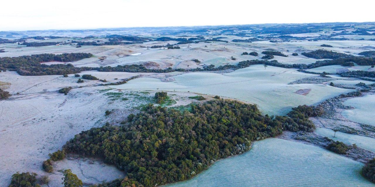 """<span class=""""entry-title-primary"""">Imagens aéreas mostram a paisagem congelada no Rio Grande do Sul</span> <span class=""""entry-subtitle"""">Soledade, onde foram realizadas as imagens aéreas com drone, teve frio de quase 5°C abaixo de zero no amanhecer de hoje</span>"""