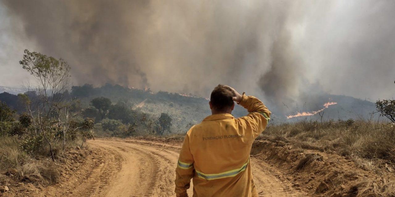 """<span class=""""entry-title-primary"""">Risco extremo de fogo no estado de São Paulo</span> <h2 class=""""entry-subtitle"""">Quase todo o território do estado de São Paulo, mesmo áreas da Grande São Paulo, terá risco extremo de fogo em vegetação na metade da semana </h2>"""