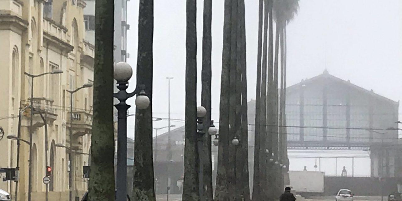 """<span class=""""entry-title-primary"""">Previsão do tempo para amanhã é de nevoeiro e frio</span> <h2 class=""""entry-subtitle"""">Muitas cidades do Rio Grande do Sul devem começar esta quarta-feira com nevoeiro e temperatura baixa com chance de marcas negativas mais uma vez na região de São José dos Ausentes </h2>"""