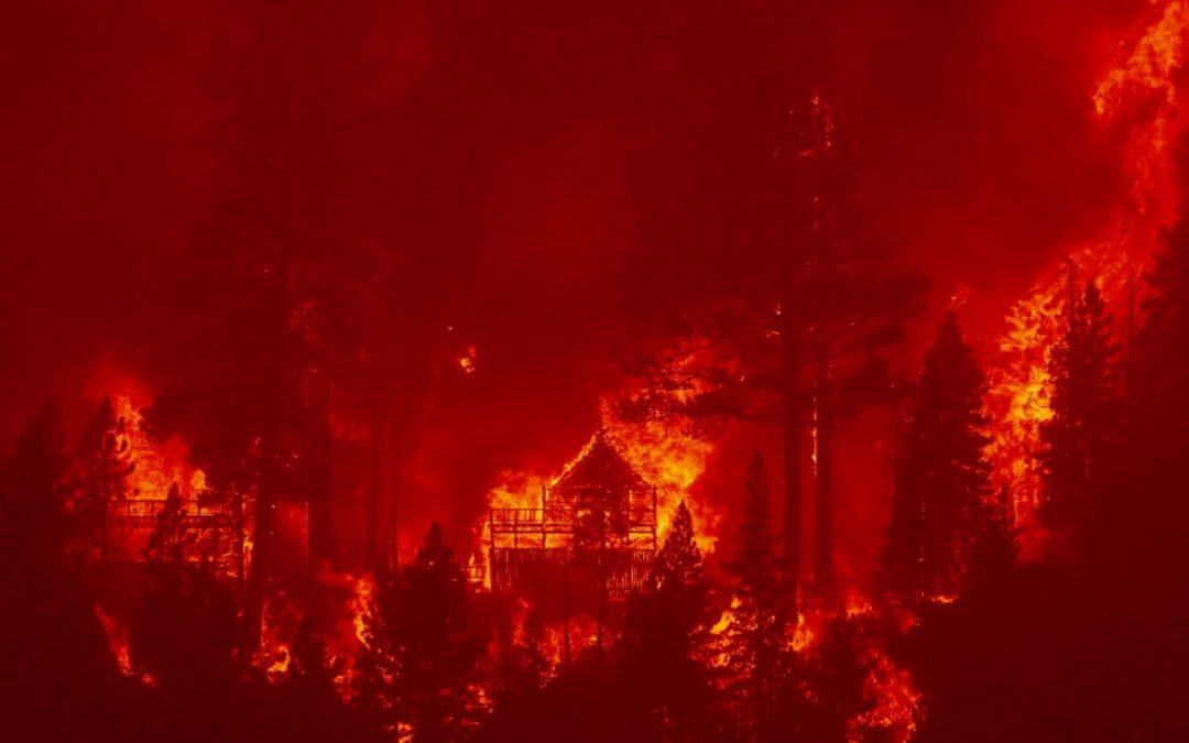 Incêndios cada vez piores e mais longos na Califórnia Imagens de sequoias de 2 a 3 mil anos sendo enroladas em alumínio para que não queimem chamaram a atenção do mundo nesta semana