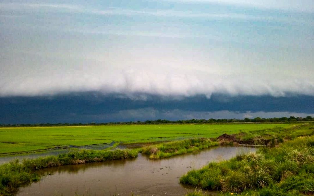Tempo muito severo trará temporais violentos entre Paraguai e o Brasil Regiões de maior risco de tempestades severas de vento e granizo com chuva forte inclui pontos do Sul, Centro-Oeste e do Sudeste do Brasil